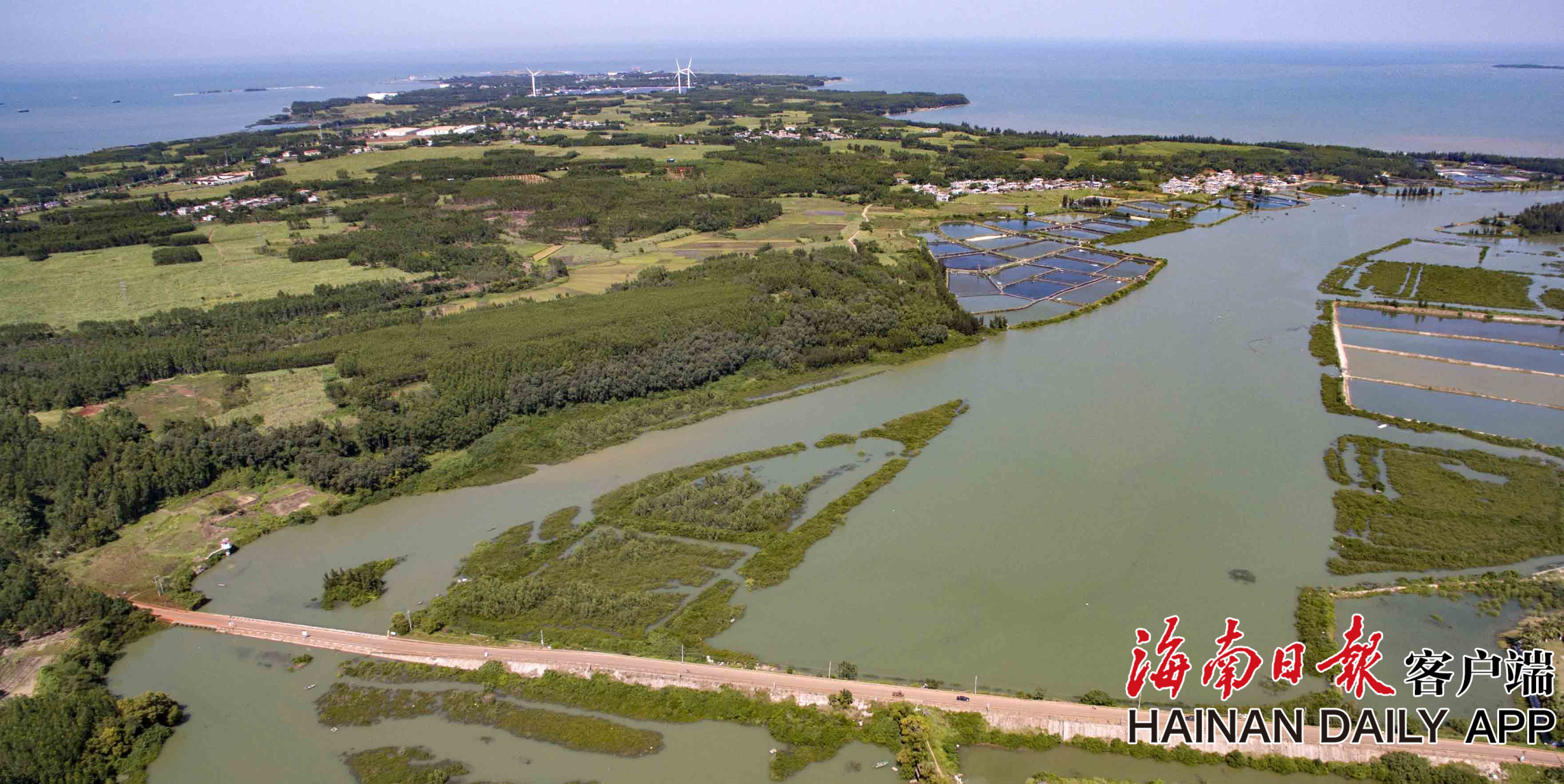 组图|海南临高马袅湾生态持续向好