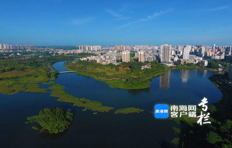 風景美如畫!看海口鳳翔濕地公園好風光