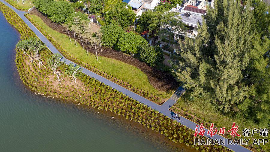 治水达标 海口鸭尾溪湿地成市民游客休闲好去处