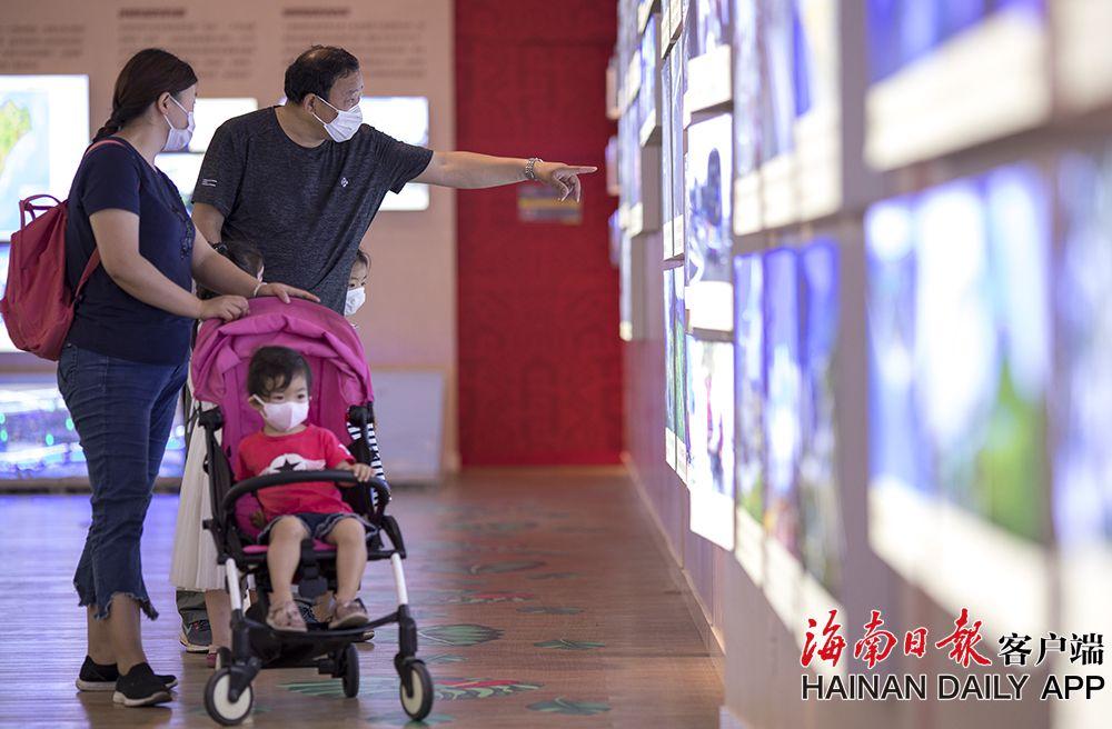 海南省博物馆今起恢复对外开放