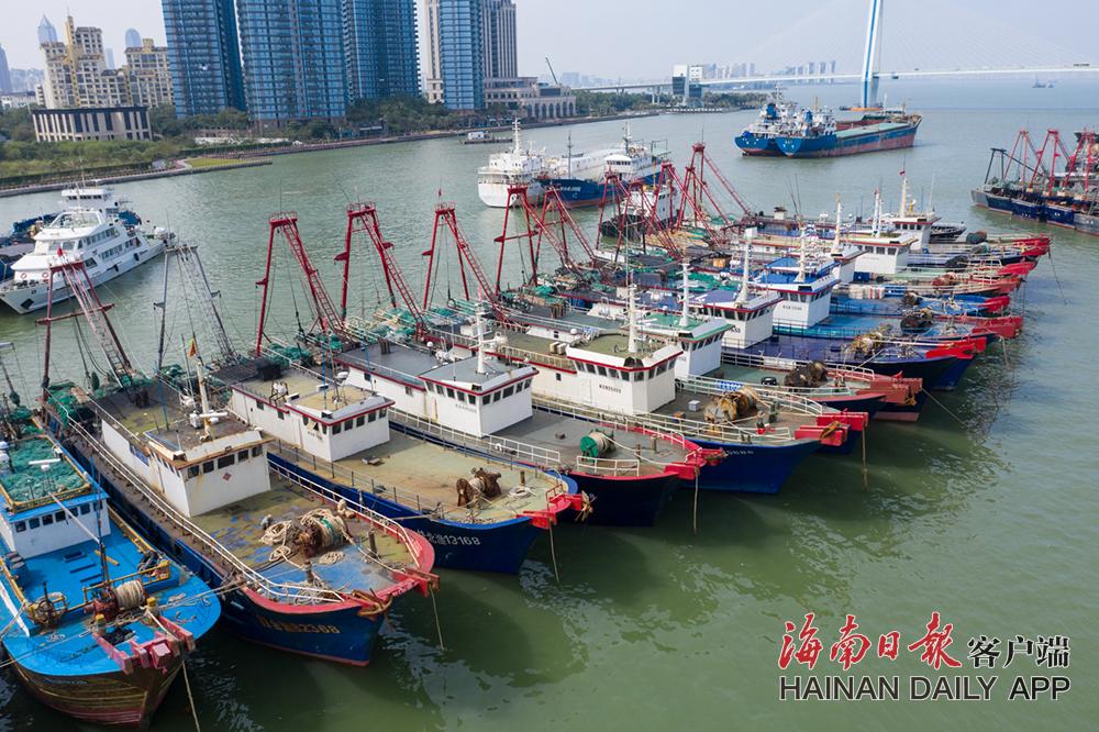 """台风""""沙德尔""""靠近 海口渔船陆续回港避风"""