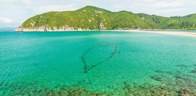 <b>人民日报聚焦海南万宁大洲岛:守护海洋生态保护金丝燕</b>